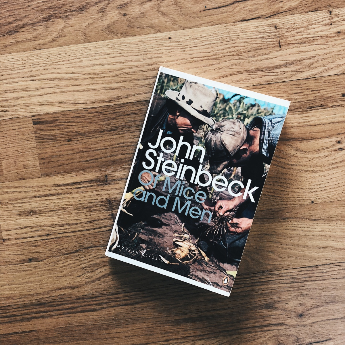 the friendship of george and lennie in of mice and men a novel by john steinbeck Steinbeck's presentation of the friendship between george and lennie in 'of mice and men' analyse steinbeck's presentation of the friendship between george.